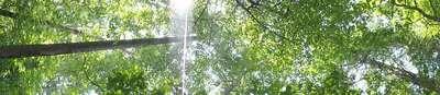 DSC01310web.jpg